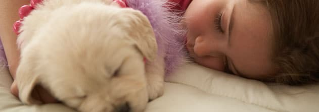 Pets and kids made easy