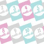 Free printable baby monthly milestone signs