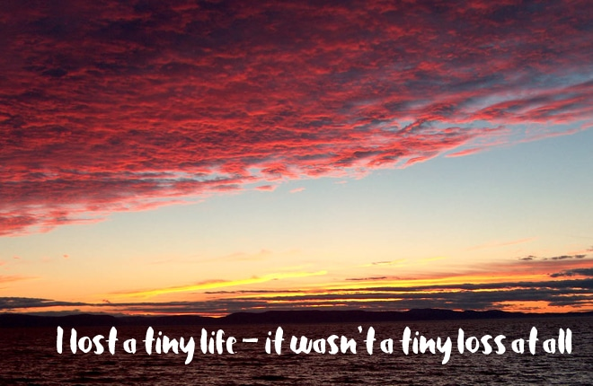 I lost a tiny life – it wasn't a tiny loss at all