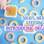Solids, weaning and feeding baby – introducing Organix