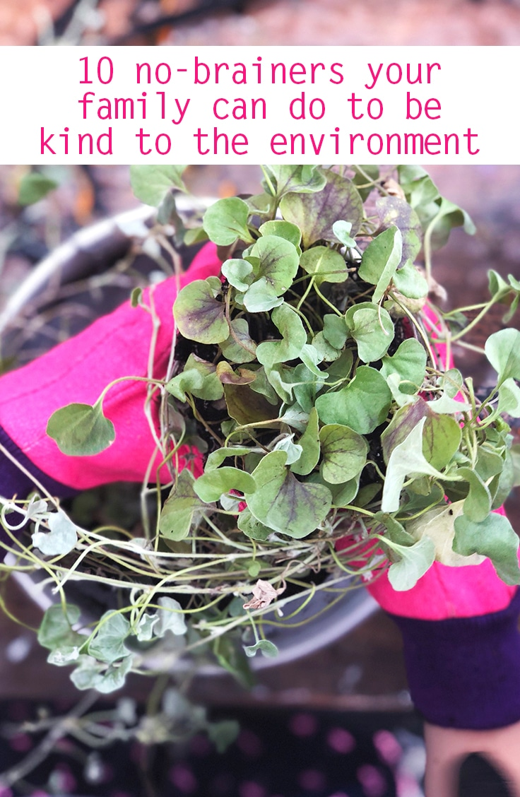 green living - ways to be kinder to the environment